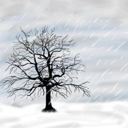 lonely tree lonelytree art draw dcalonelytree alonelytree