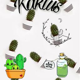 freetoedit kaktus kawaii irccactibackground cactibackground
