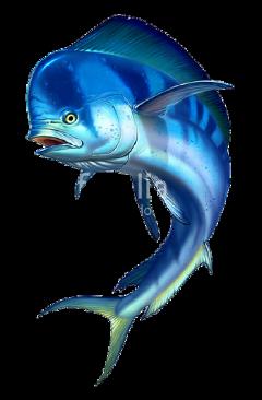 blue fish sticker freetoedit