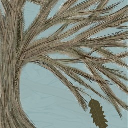tree nature drawing fall leaf dcalonelytree alonelytree