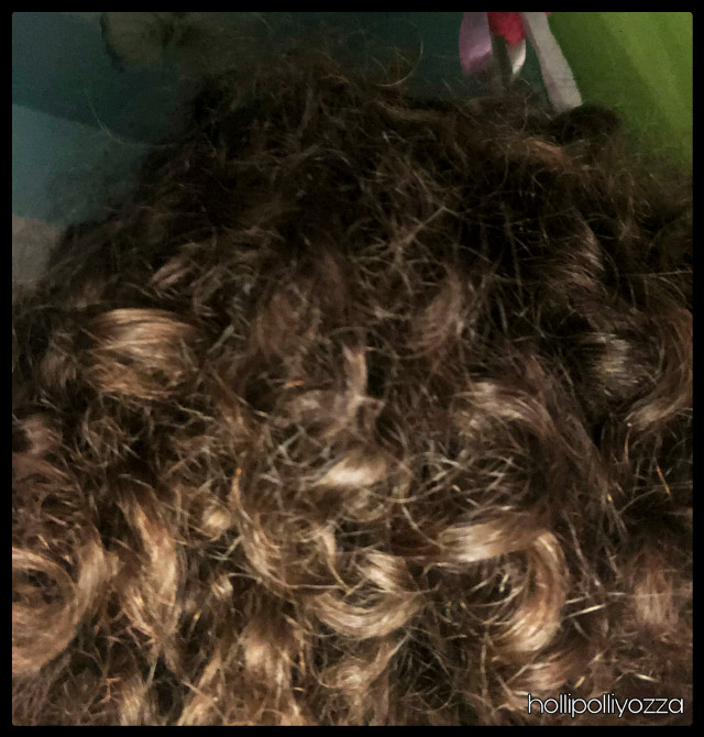 Another picture of my curls!   @lizybizy @tabooyinyangthetrash @edwincruz16 @arixmoonlight09  @cheesybitchh  I took this pic at my other profile @dolliyozza  Please don't edit thus but if u do credit me please.  :) #naturalhair #naturalcurls #curly #curlyhairvibes #curlyhead #curlyhairdontcare  @edwincruz16  Hollipolliyozza