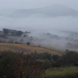 freetoedit rainyday foggymorning cloudy coldmorning pcgloomyweather gloomyweather