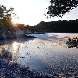 wintersun nature iced lakescape