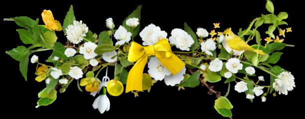 cuorelucymy lucymy flowers flowerslucymy freetoedit