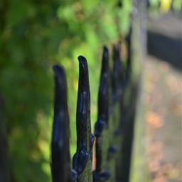 fence myphoto kinora loveit walk