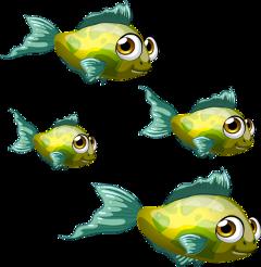 peixes freetoedit