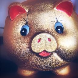 freetoedit pig piggy piggybank gold