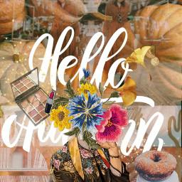 freetoedit autumnstyle autumnfashion autumn moodboards ccautumnmoodboard autumnmoodboard