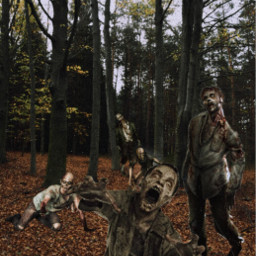zombie mortvivant forest scary horreur scene freetoedit