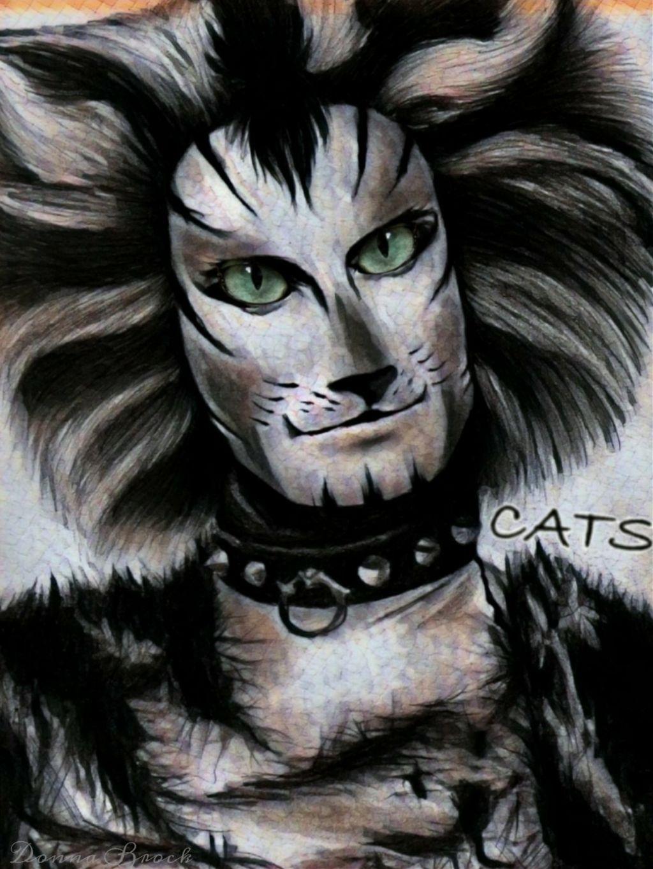 CATS ON BROADWAY ...   CAT GLANCE CHALLENGE ...  CAT ON BROADWAY ...     #catglance #cats #musical #music #dancers #freetoedit  #irccatglance