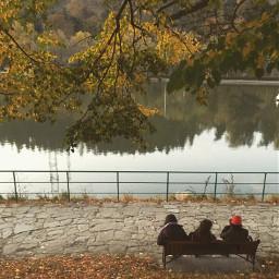 freetoedit photography nature naturephotography autumn