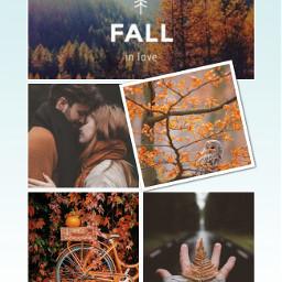 autumn autumnfeels autumncollage ccautumnmoodboard autumnmoodboard