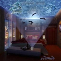 freetoedit @asweetsmile1 dolphins movie moonlight