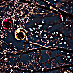 freetoedit ornaments branches tree lights