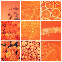 orange aesthetic grid aestheticgrid