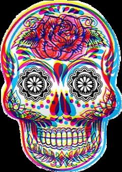 interesting skull candyskull flower dead freetoedit schippies hippies
