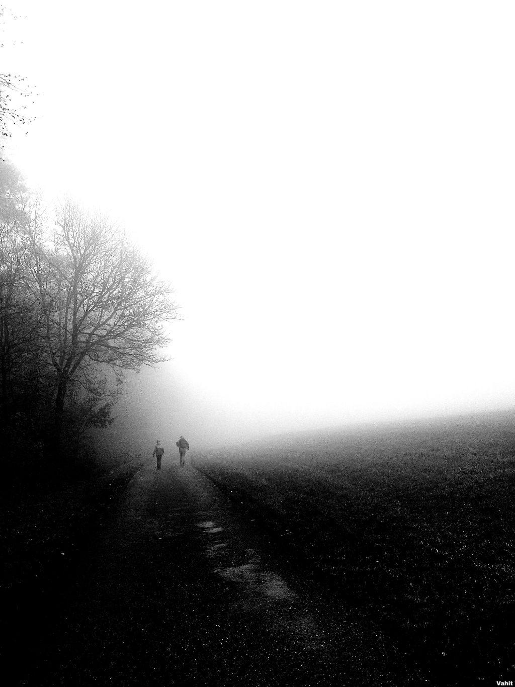 #freetoedit #fog#blackandwhite#walkway#pathway#myphotography