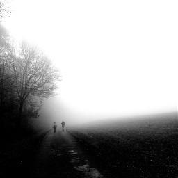 freetoedit fog blackandwhite walkway pathway
