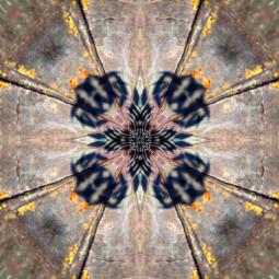mirrormania myedit freetoedit mirroreffect abstract
