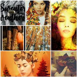 fallfashion freetoedit ccautumnmoodboard autumnmoodboard moodboard autumn collage