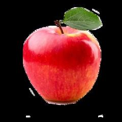 apple bikini teenager jorgeamarante teengirl freetoedit