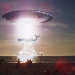 freetoedit sunset ufo whale ocean
