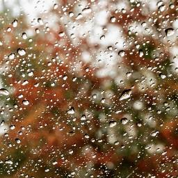 autumnweather rainyday raindroplets carwindow nature freetoedit