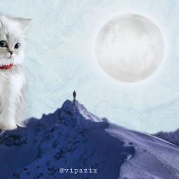 freetoedit vipaziz white cat moon