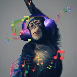 freetoedit ape music monkey srcheadphone