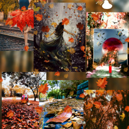 freetoedit top autumncolors ccautumnmoodboard autumnmoodboard