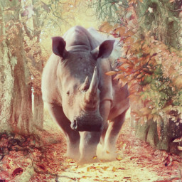 freetoedit fantasy trees rhino reggie7