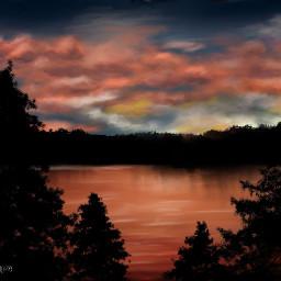 dcnightforest nightforest