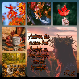 ccautumnmoodboard autumnmoodboard moodboard collage
