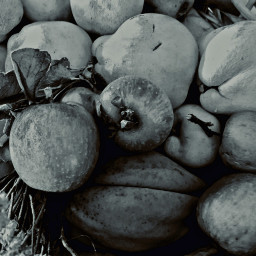 freetoedit fruits stilllife nature myoriginalphoto