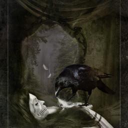 editedbyme raven sleep dreaming doubleexposure
