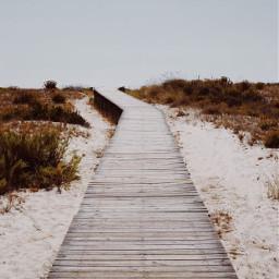 woodenpath beach autumnweather beachmood dunes freetoedit