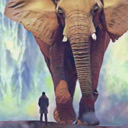 freetoedit myeditremix reggie7 elefant