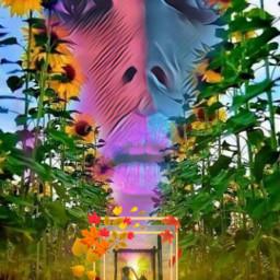 freetoedit desafio adesivo cores efeitos srcautumnframe autumnframe
