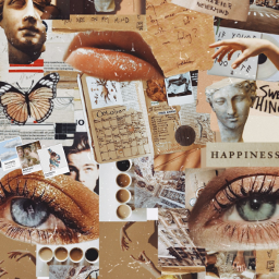 freetoedit collage aesthetic ecaesthetic