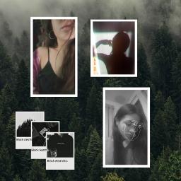 freetoedit black blackaesthetic collage forest ecaesthetic