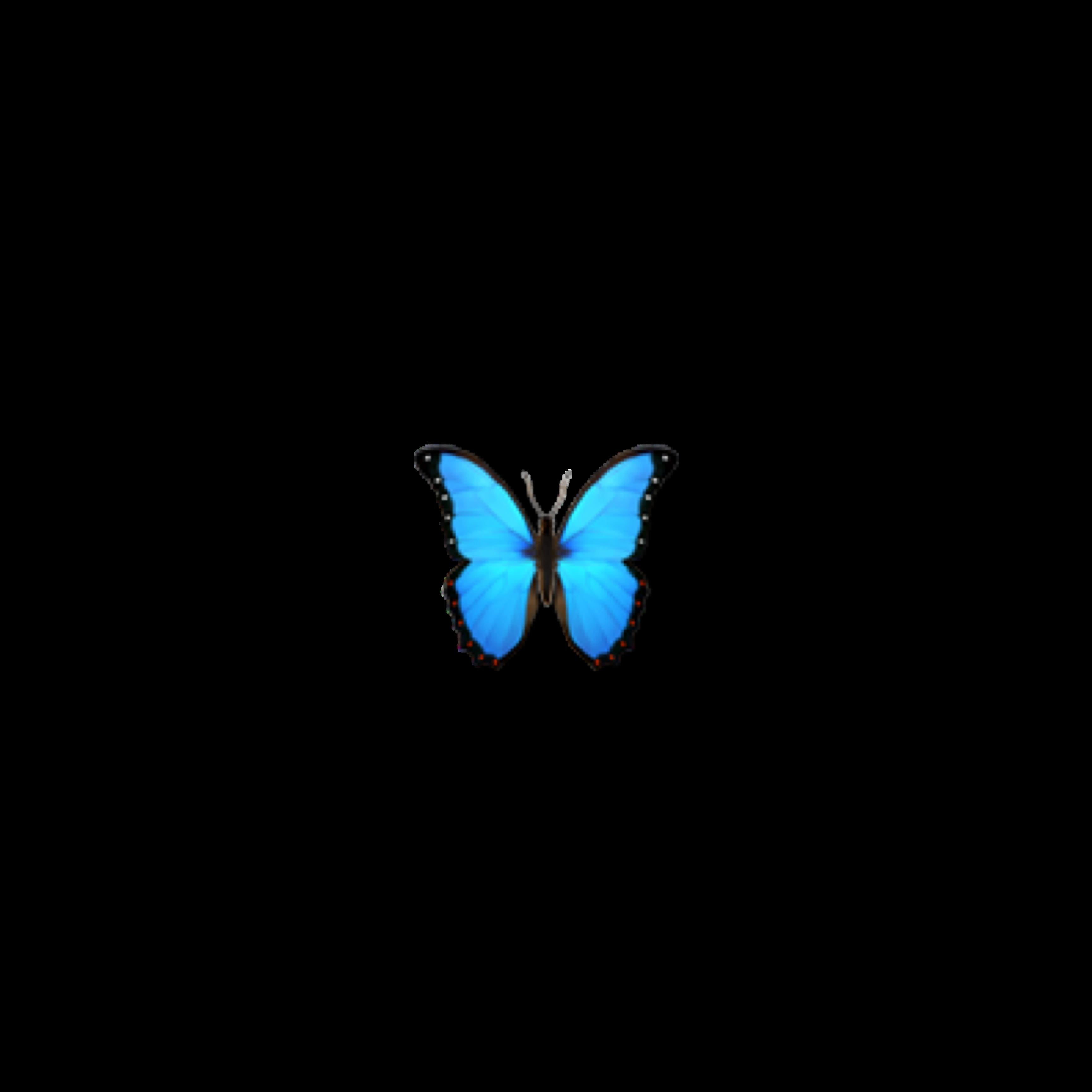 butterfly blue emoji appleemoji complexedit givecredit...