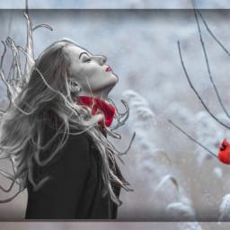 myedit snowy winter frost breeze freetoedit ircautumnvibes autumnvibes