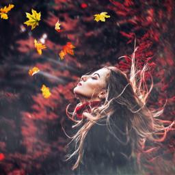 freetoedit ircautumnvibes autumnvibes