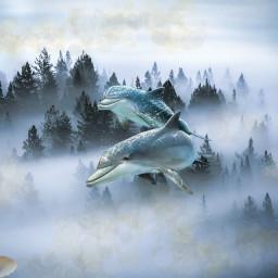 dolphins shell pearl snowfall freetoedit