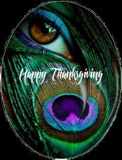 scthanksgiving thanksgiving freetoedit