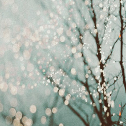 christmas xmas snow beutyfull magical freetoedit