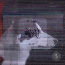 freetoedit mute volume sound glitch
