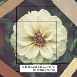 freetoedit quote flower tape frame