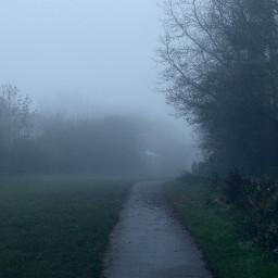 pathway foggyday misty moody outandabout freetoedit