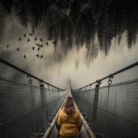 #freetoedit,#ircfoggybridge,#foggybridge